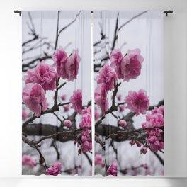 Sakura IV Blackout Curtain