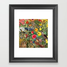 Birds Insects Plants Framed Art Print