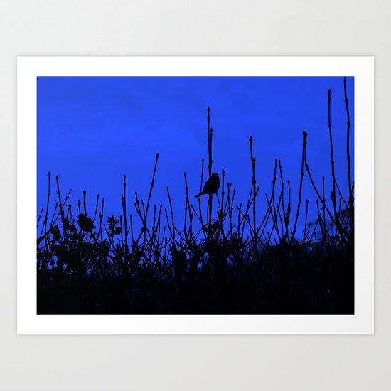 Bird Shadows (BLUE) #1 Art Print