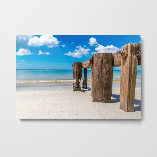 Gnawed Metal Print
