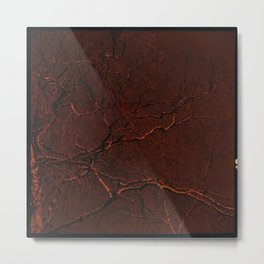all red Metal Print