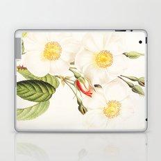 III. Vintage Flowers Botanical Print by Pierre-Joseph Redouté - Rosa Damascena Subalba Laptop & iPad Skin