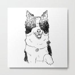 Border Collie Sketch Metal Print