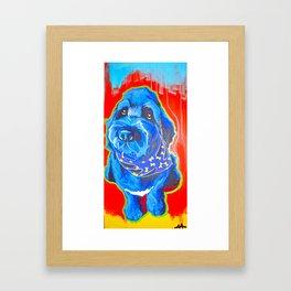 Mr. Harvey Bernstein Framed Art Print