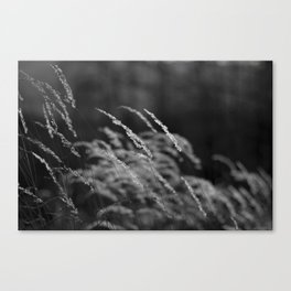 For my Grandmother Canvas Print