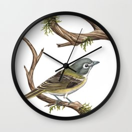 Blue-headed Vireo (Vireo solitarius) Wall Clock
