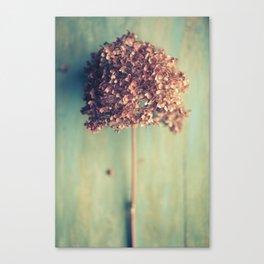 Autumnal Light no.2 Canvas Print