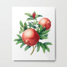 Pomegranate pattern II Metal Print