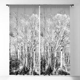 dreamland trees, b&w Blackout Curtain