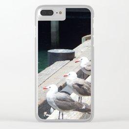 squawk Clear iPhone Case