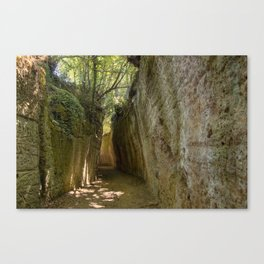 Excavated Etruscan Roads Canvas Print