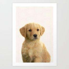 Dog print dog photography minnimalist nursery art animal Art Print