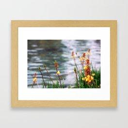 Lake Flora Framed Art Print