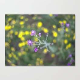 Wildflower Whirl Canvas Print