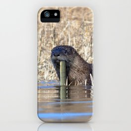 Watercolor Otter 01, Jane's Island, Maryland iPhone Case