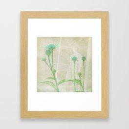 Trying To Blend Framed Art Print