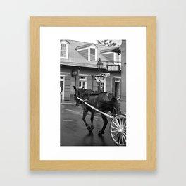New Orleans - Bourbon Street Horse 2004 Framed Art Print
