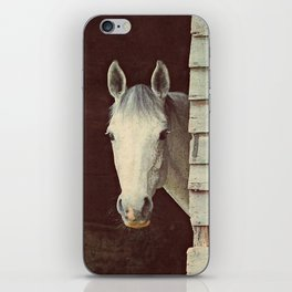 Peekaboo Mare // Horse iPhone Skin