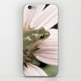Treefrog on flower iPhone Skin