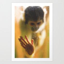 Bolivian Squirrel Monkey Art Print