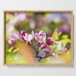 Crabapple Blossoms 17 Serving Tray