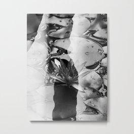 Lotus 01 Pb Tas Metal Print