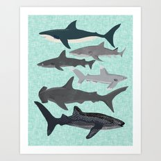 Sharks nature animal illustration texture print marine biologist sea life ocean Andrea Lauren Art Print