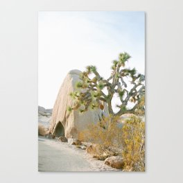Jumbo Rocks Campground, Joshua Tree Canvas Print