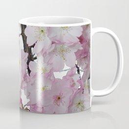 Glorious Spring Cherry Blossoms Coffee Mug