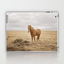 Solitary Horse in Color Laptop & iPad Skin