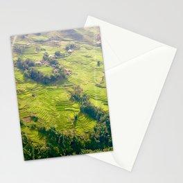 Vietnam Fields - Sa Pa Stationery Cards