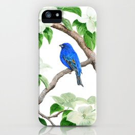 Royal Blue-Indigo Bunting in the Dogwoods by Teresa Thompson iPhone Case