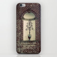 Brick and Flowers in a Vase Color Photo iPhone & iPod Skin
