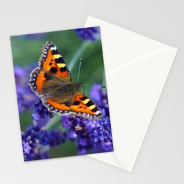 Small Tortoiseshell on Lavender Stationery Cards