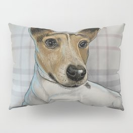 Freddie Pillow Sham