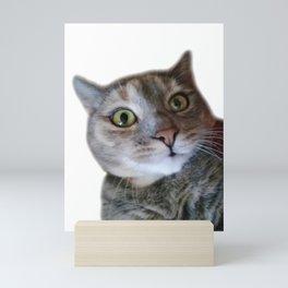 Confused cat Mini Art Print