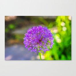 Purple + Blue Flower Canvas Print