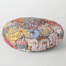 Clown fish and Sea anemones Floor Pillow