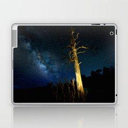 Lighted Tree Laptop & iPad Skin