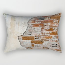 Cracked Facade Rectangular Pillow