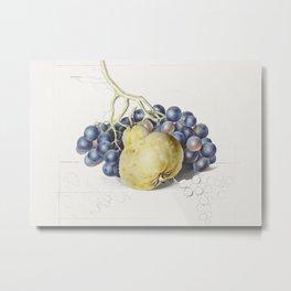 Stilleven met druiven en een peer by Georgius Jacobus Johannes van Os Metal Print