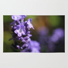 Lavender purple flower plant Rug