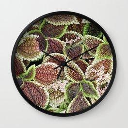 Friendship/Moon Valley Plant Wall Clock
