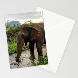 Laotian Elephant Hike Stationery Cards