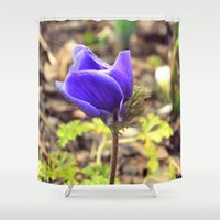 french Shower Curtains featuring French by J's Corner