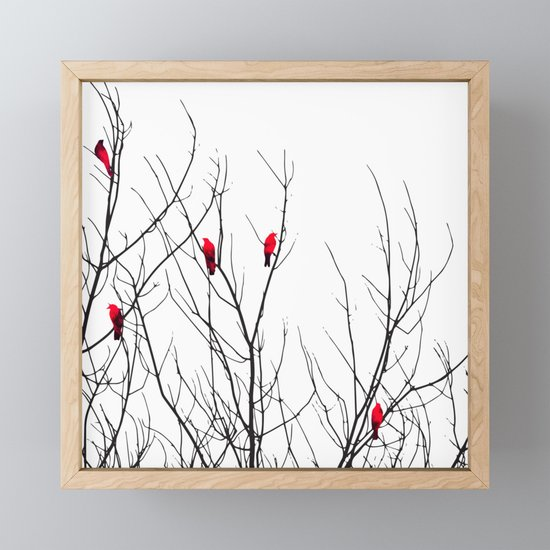 Artistic Bright Red Birds on Tree Branches by blackstrawberry