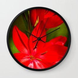 Schizostylis coccinea 'Cardinal' Wall Clock