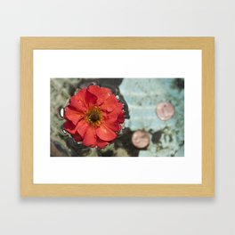 Floating Flower Framed Art Print
