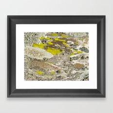 Lichens Over Bark 2 Framed Art Print