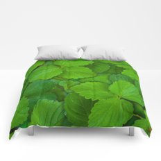 Holy Basil Tulsi Green Mint Leaves Comforters